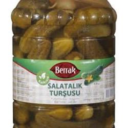 Turşu Salatalık